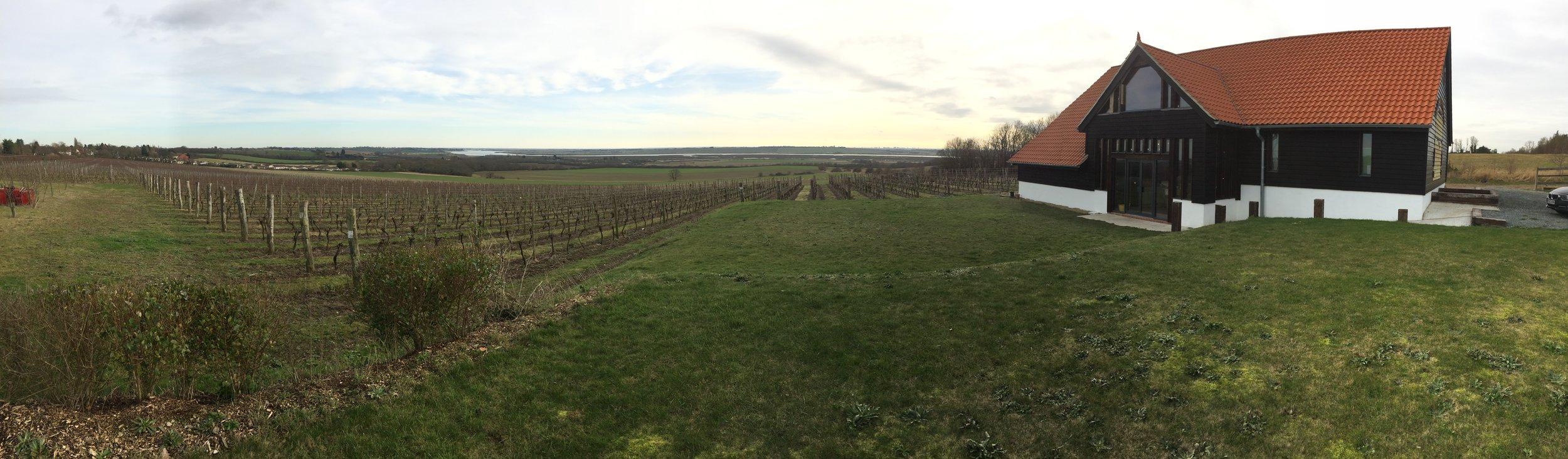 Clayhill Vineyard Essex