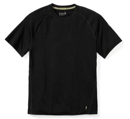 stock-smartwool-merino-150-tshirt.jpg