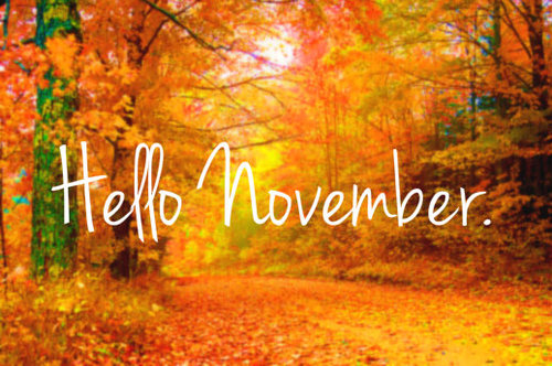 Meeting Dates Now Online - Meetings throughout Ireland in November 2018