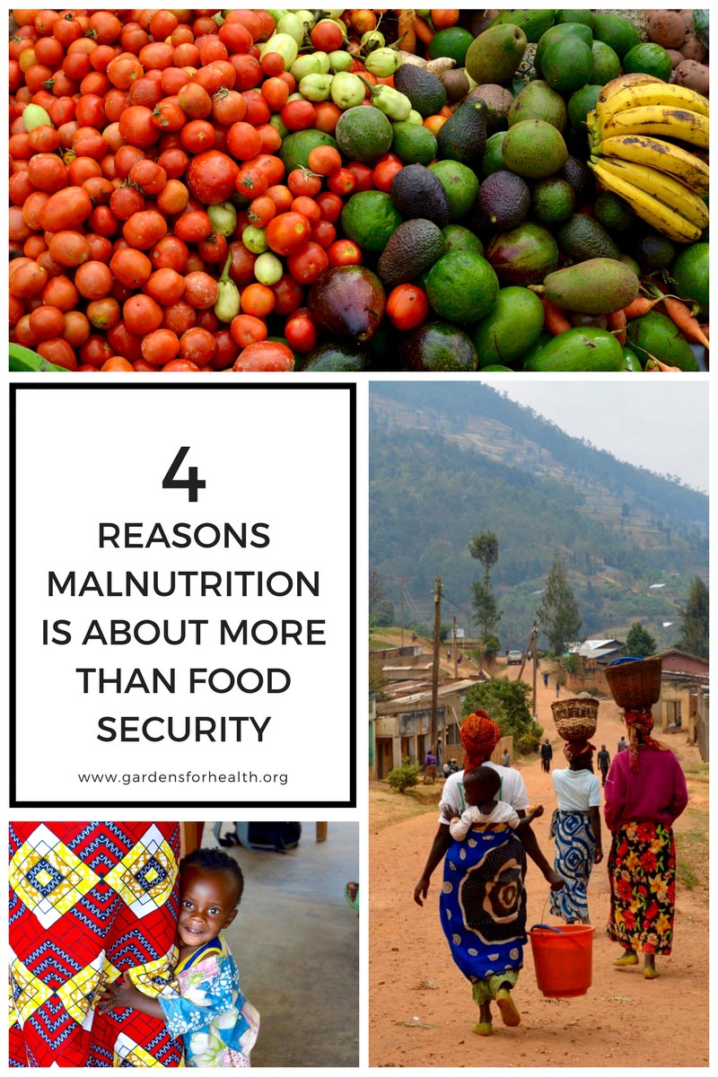 Four Reasons Malnutrition is About More Than Food Security-2.jpg