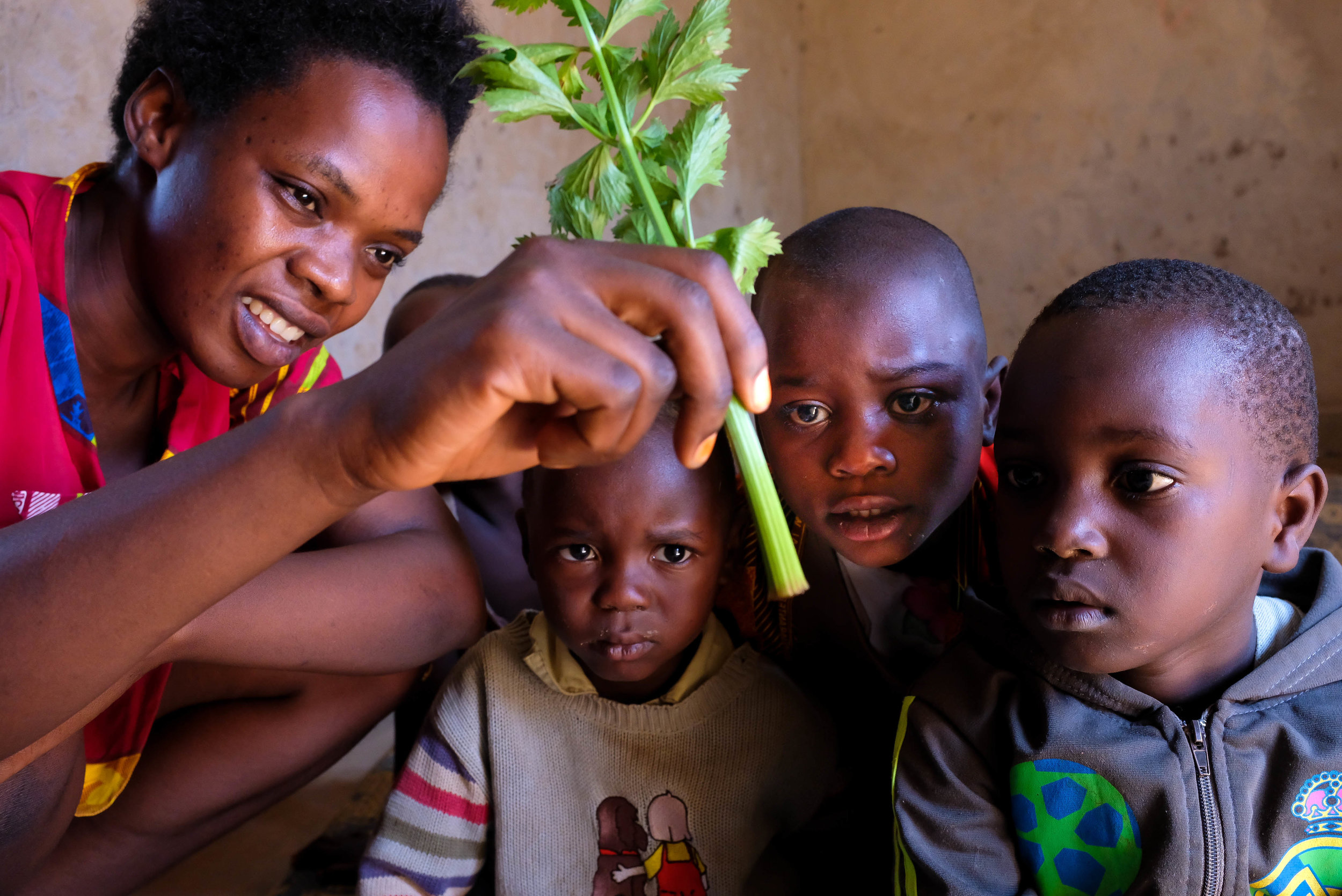 Celette, our ECD teacher, shows Ange, ECD participant, how water travels through a celery stalk on February 16, 2018.