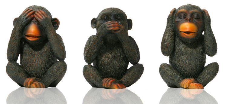 Don't be a monkey! Knowledge is power when it comes to selling your home.