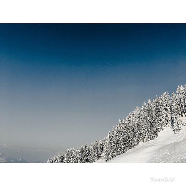 Mountain in Austria . . . . . . . . . #austria #mountain #ski #skiing #snow #tree #forest #sky #cloud #vsco #vscocam #sonya6300 #picoftheday