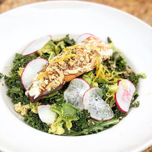 Kale salad with almond crusted Salmon. - Love this salad! - Did you know that kale is one of the most healthy and nutritious greens. Kale helps lower cholesterol levels in the body, steamed kale in particular. Kale is extremely high in vitamin C. A single cup of raw kale contains more vitamin C than an orange. Many important minerals are also found in kale, some of them we normally don't get through our modern diet today. These include calcium, potassium and magnesium. - - - - - - #kaleisking #nutritiousgreens #nutritionaltips #magnusmethod #magnuslygdback