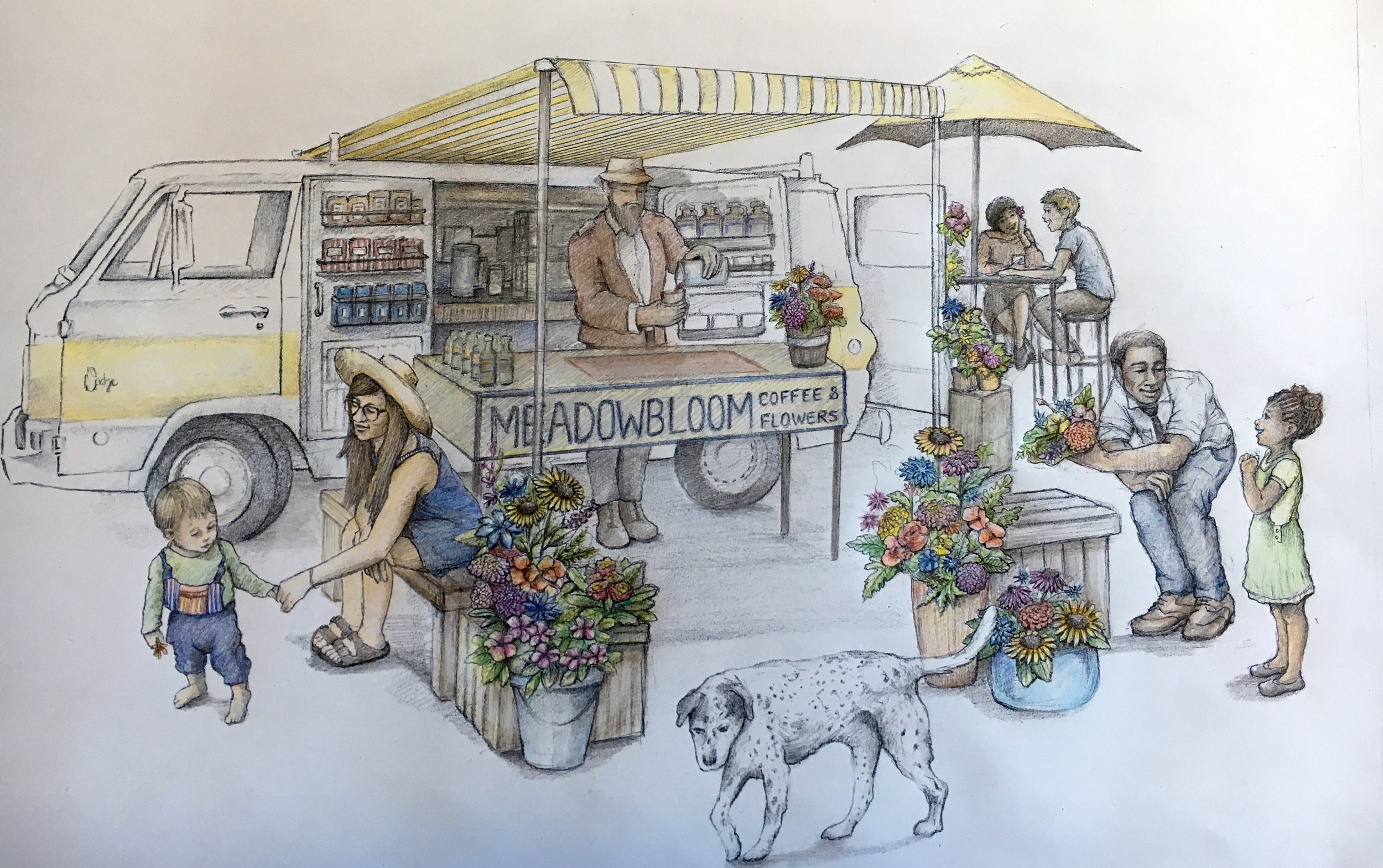 MeadowBloom Coffee and Flowers, Concept Drawing  Graphite and colored pencil