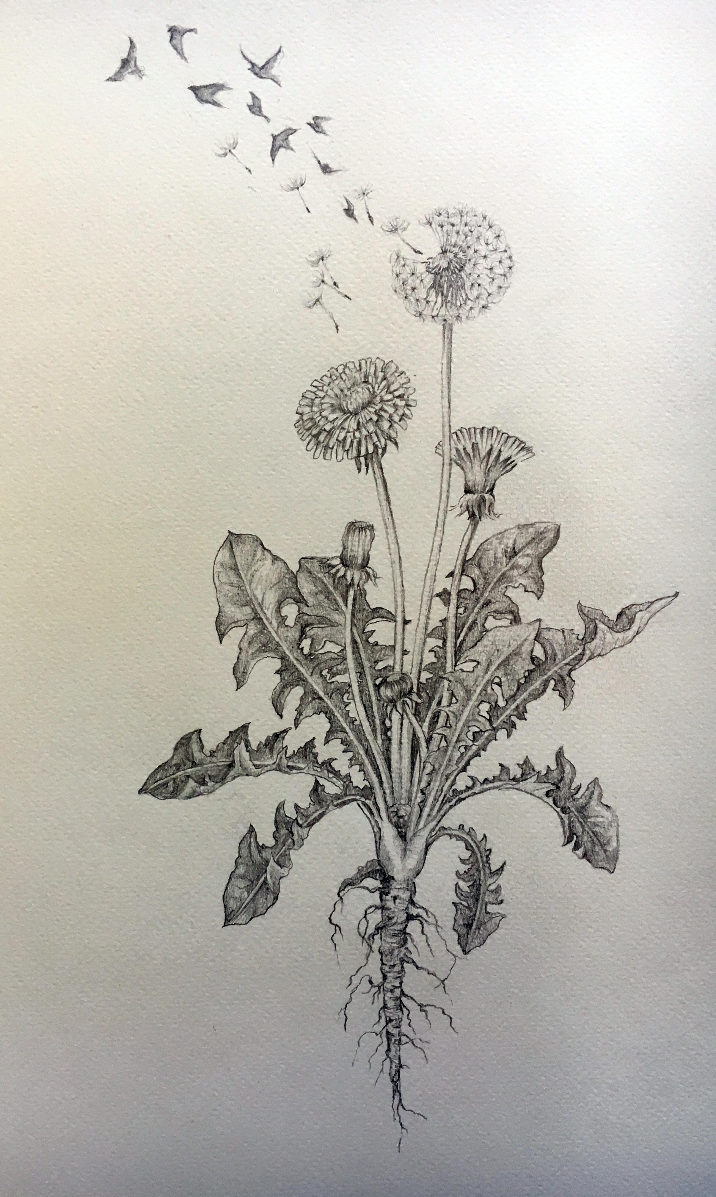 Tattoo Commission  Graphite pencil on watercolor paper