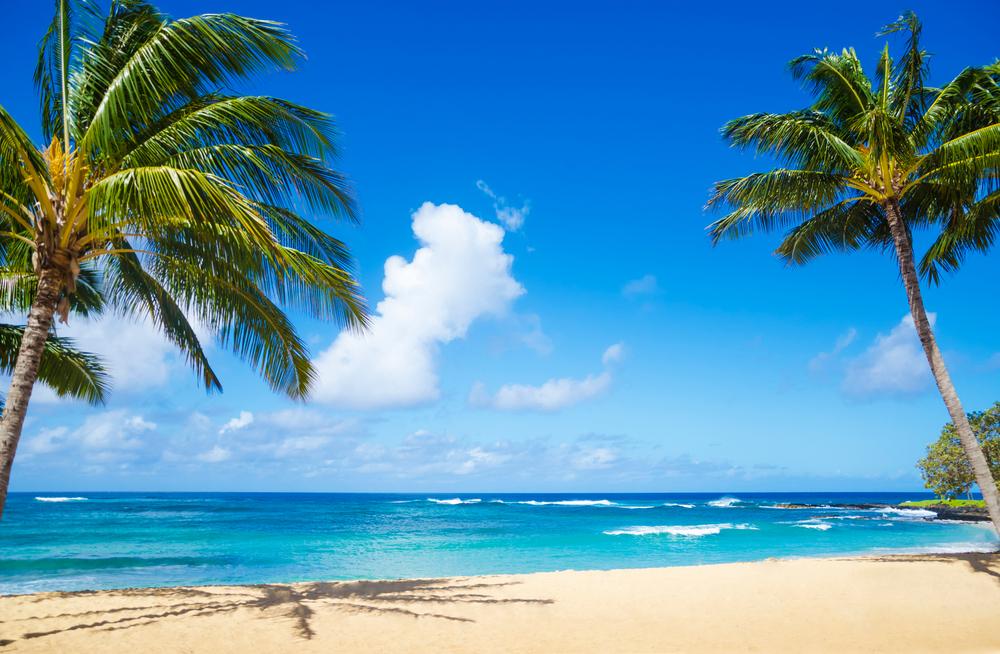 Havaiji kieltää kemian aurinkovoiteet.jpg