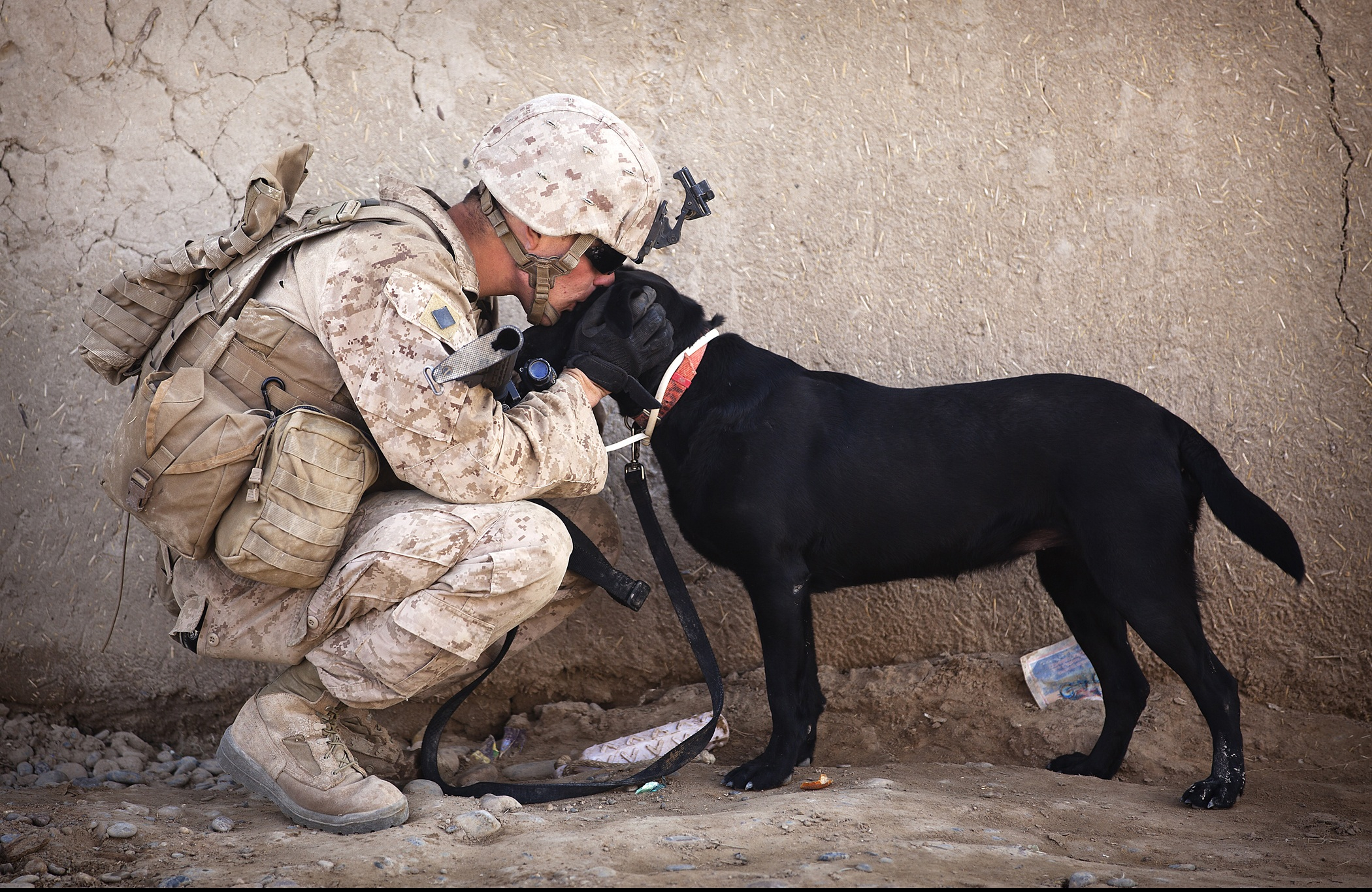 Canva - Soldier and Black Dog Cuddling.jpg