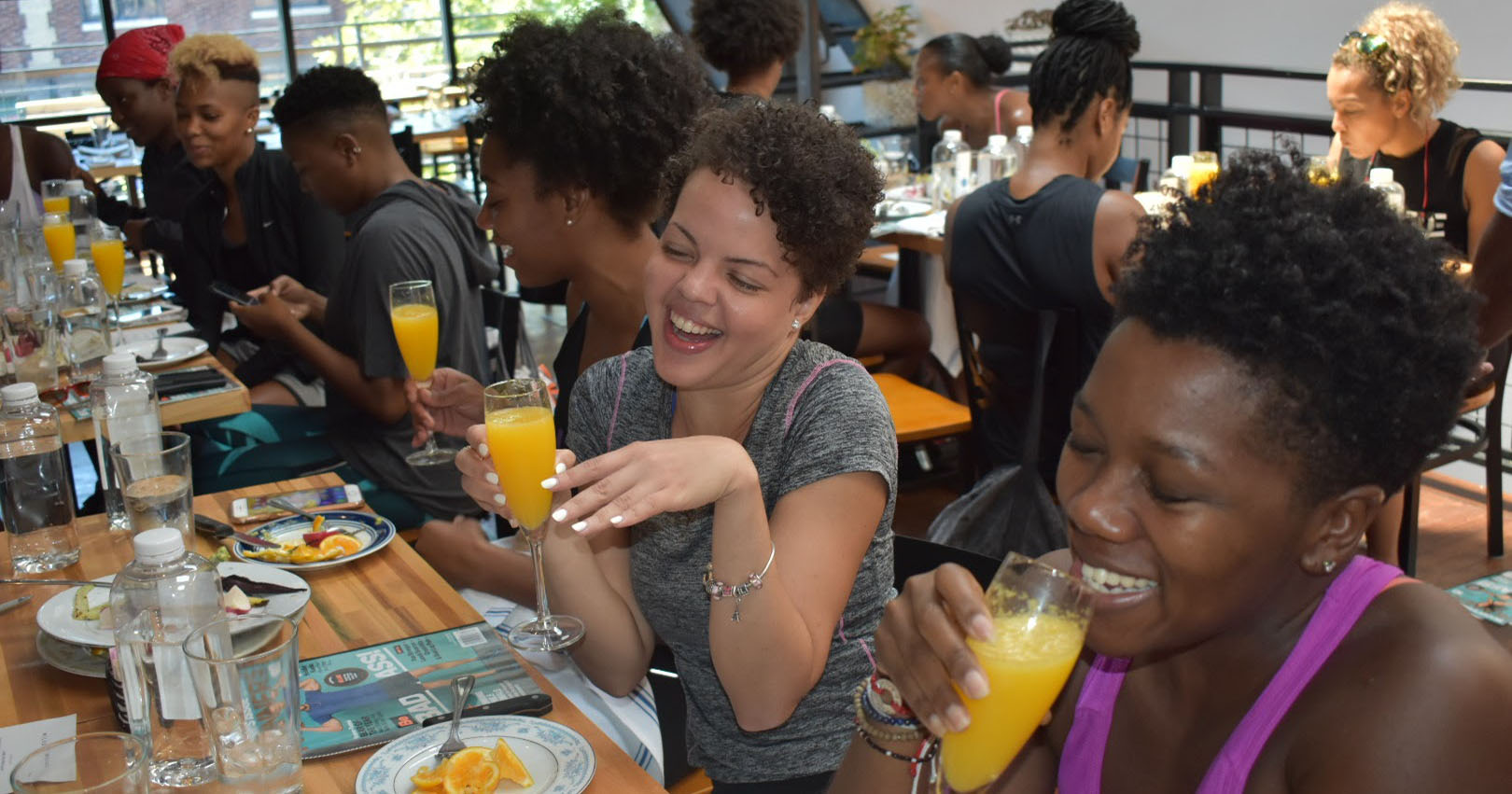 MM DC mimosa.jpg