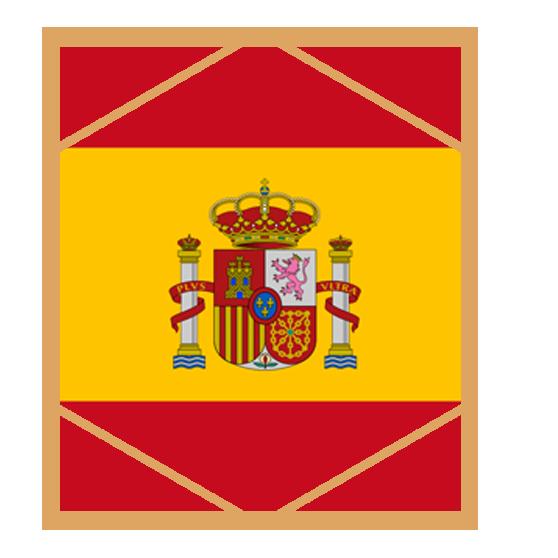 AREAS OF PRACTICE SPAIN.png