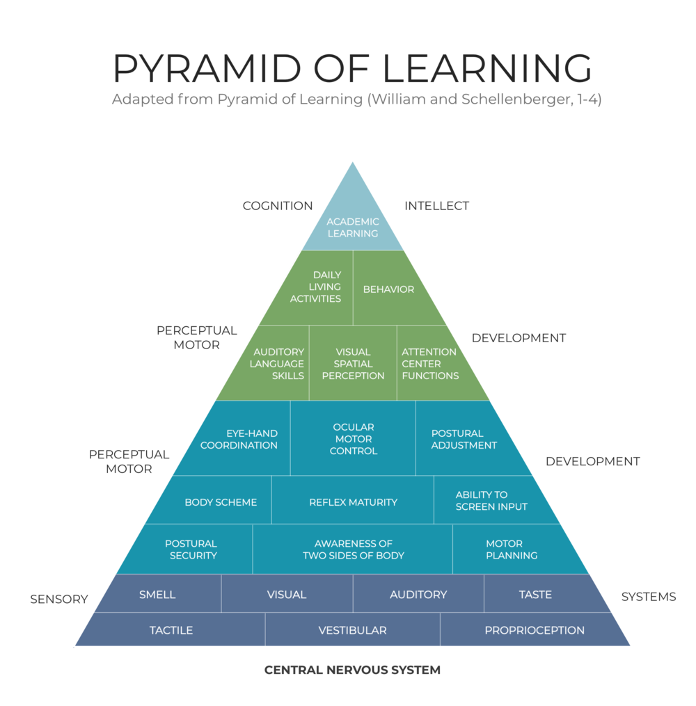 Willian and Schellenberger Pyramid of Learning