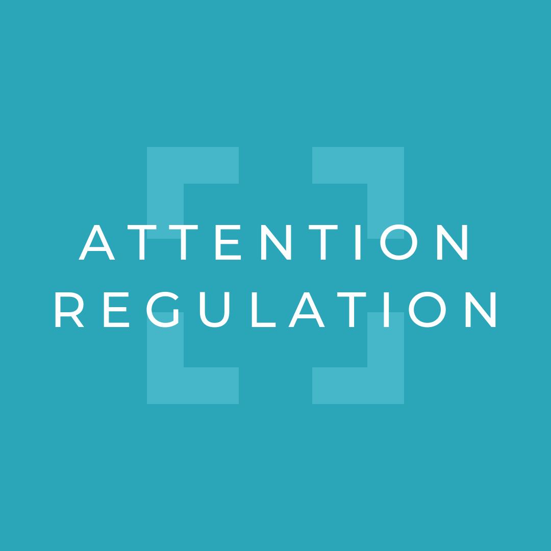 Attention Regulation.png