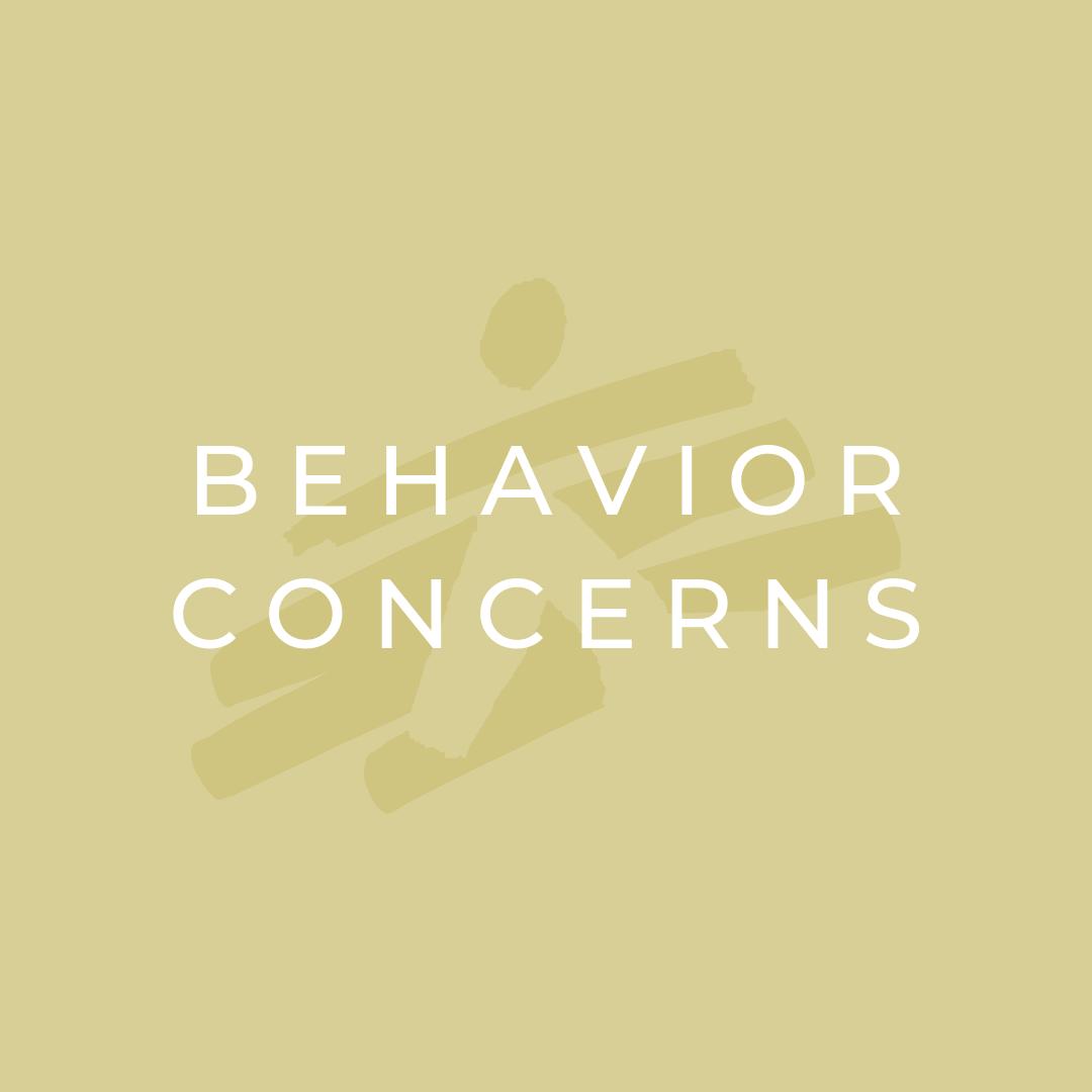 Behavior Concerns.png