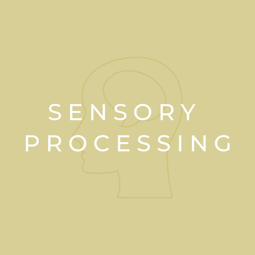 Sensory Processing.png