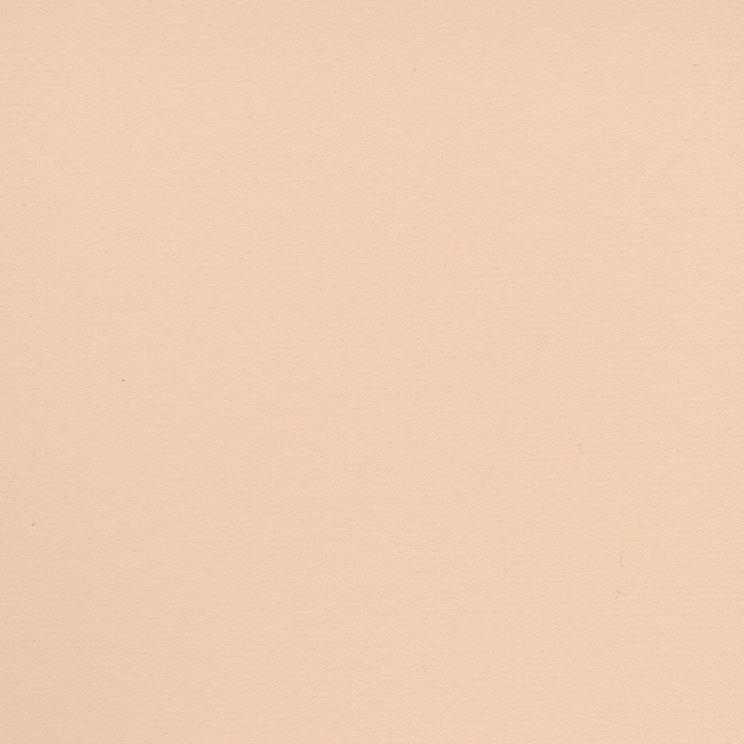 Screen Shot 2019-03-06 at 9.18.08 PM.png
