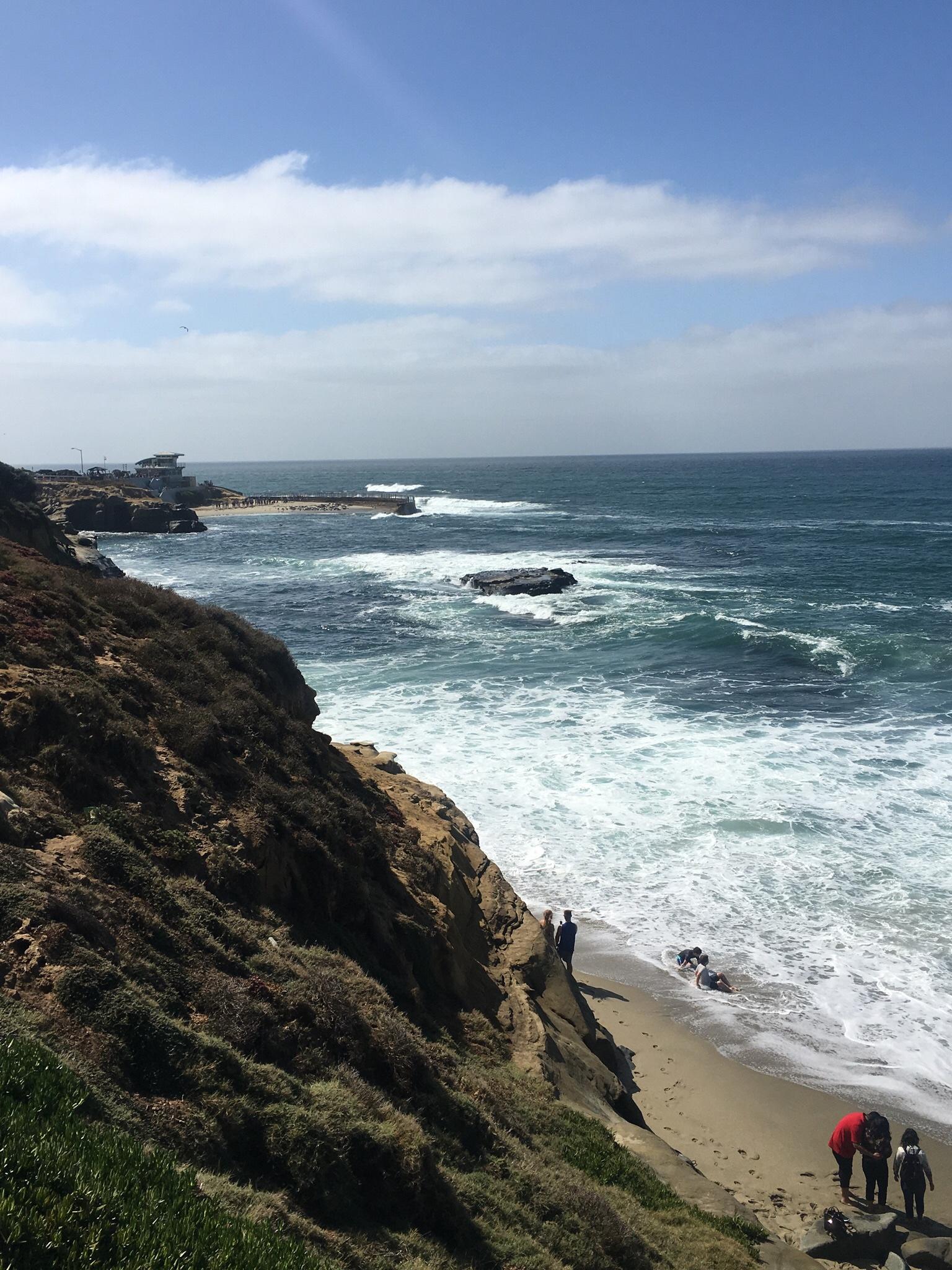 Photo courtesy of Fefe @ La Jolla California