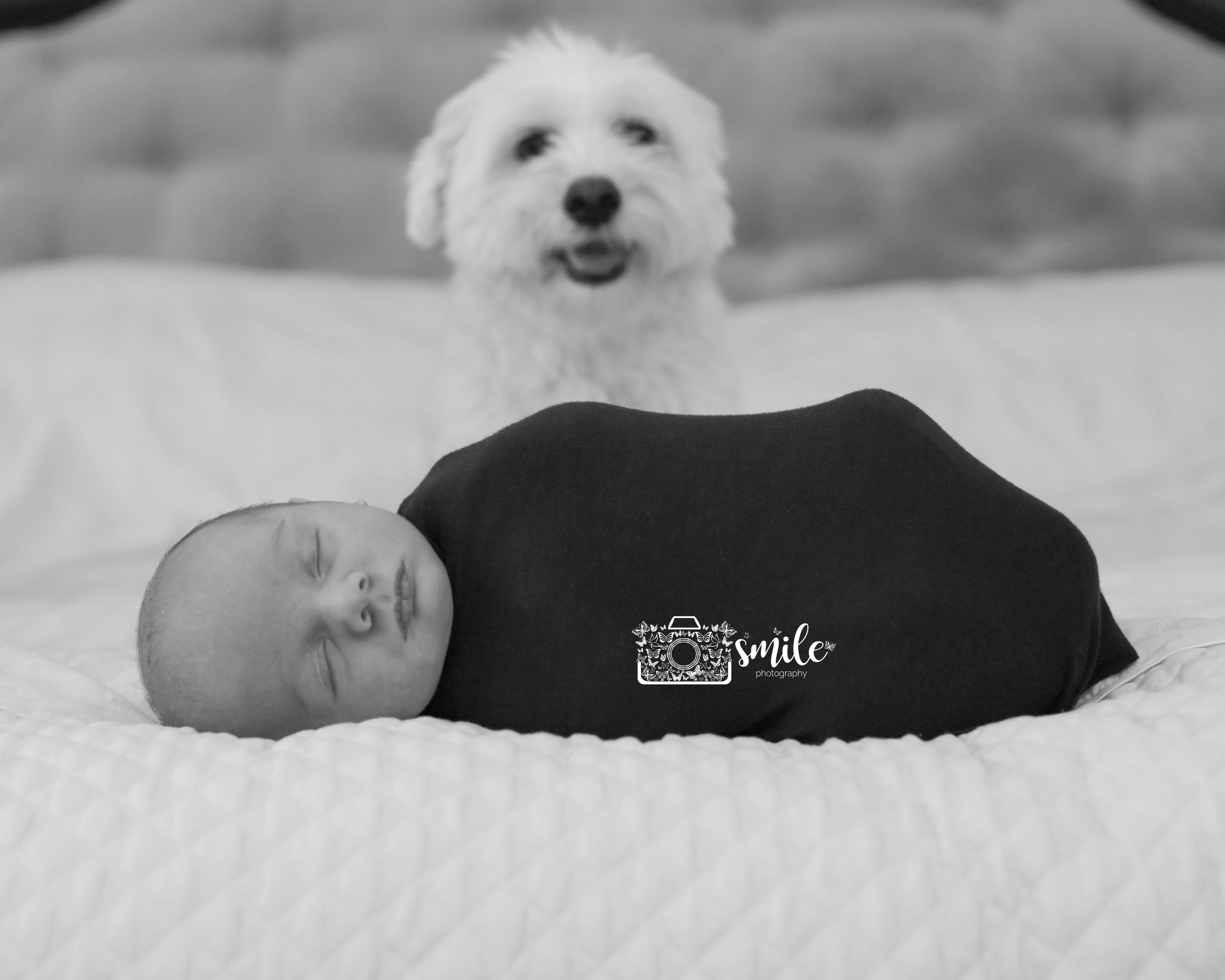 Lifestyle Newborn Photography Jersey Shore Photographer