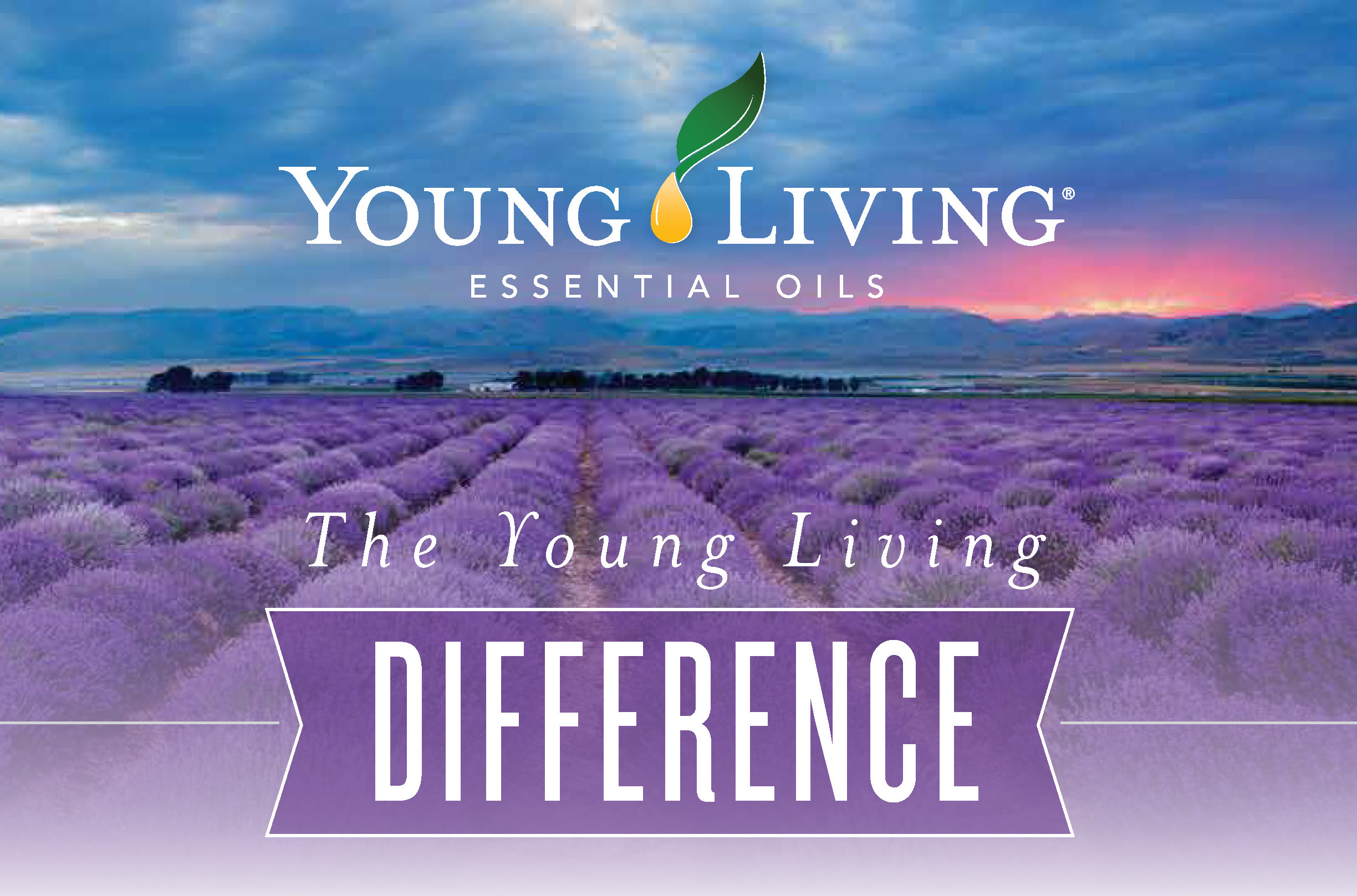 the-young-living-difference.jpg