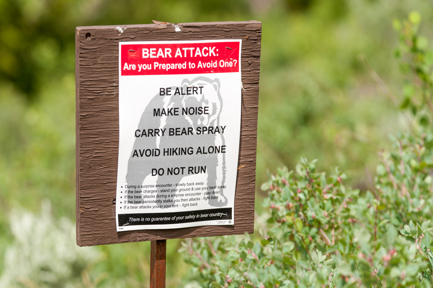 Pat Attention to National Park Service Signs