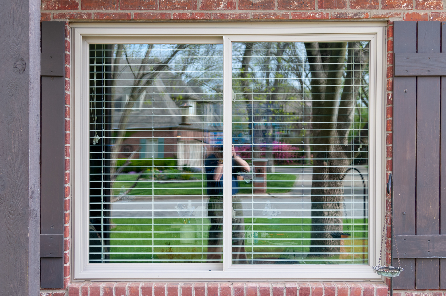 Here is the window we installed. It easily slides right or left, and the blinds can be raised for easy viewing. We do have window decals to help prevent bird strikes.