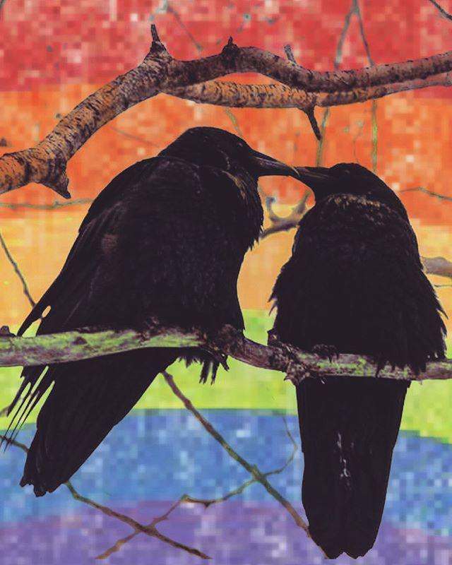 Thirsty Crow wishes you a Happy Pride, Los Angeles!! ♥️ #CelebrateLove #CelebrateDiversity #Pride2019