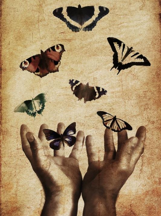 Do+not+be+afraid%2C+butterflies.jpg