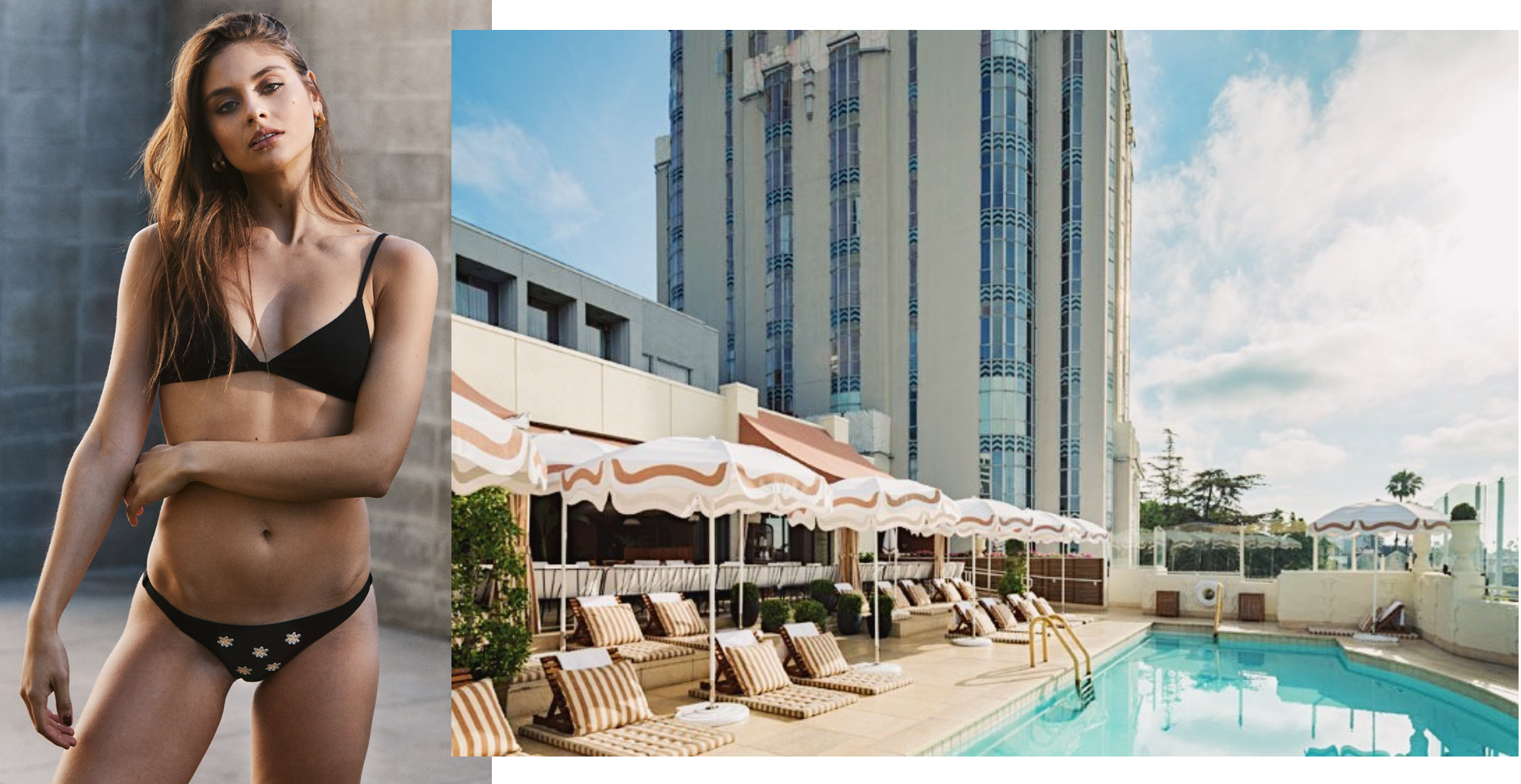 Photos (L-R): Anemone // The Sunset Tower