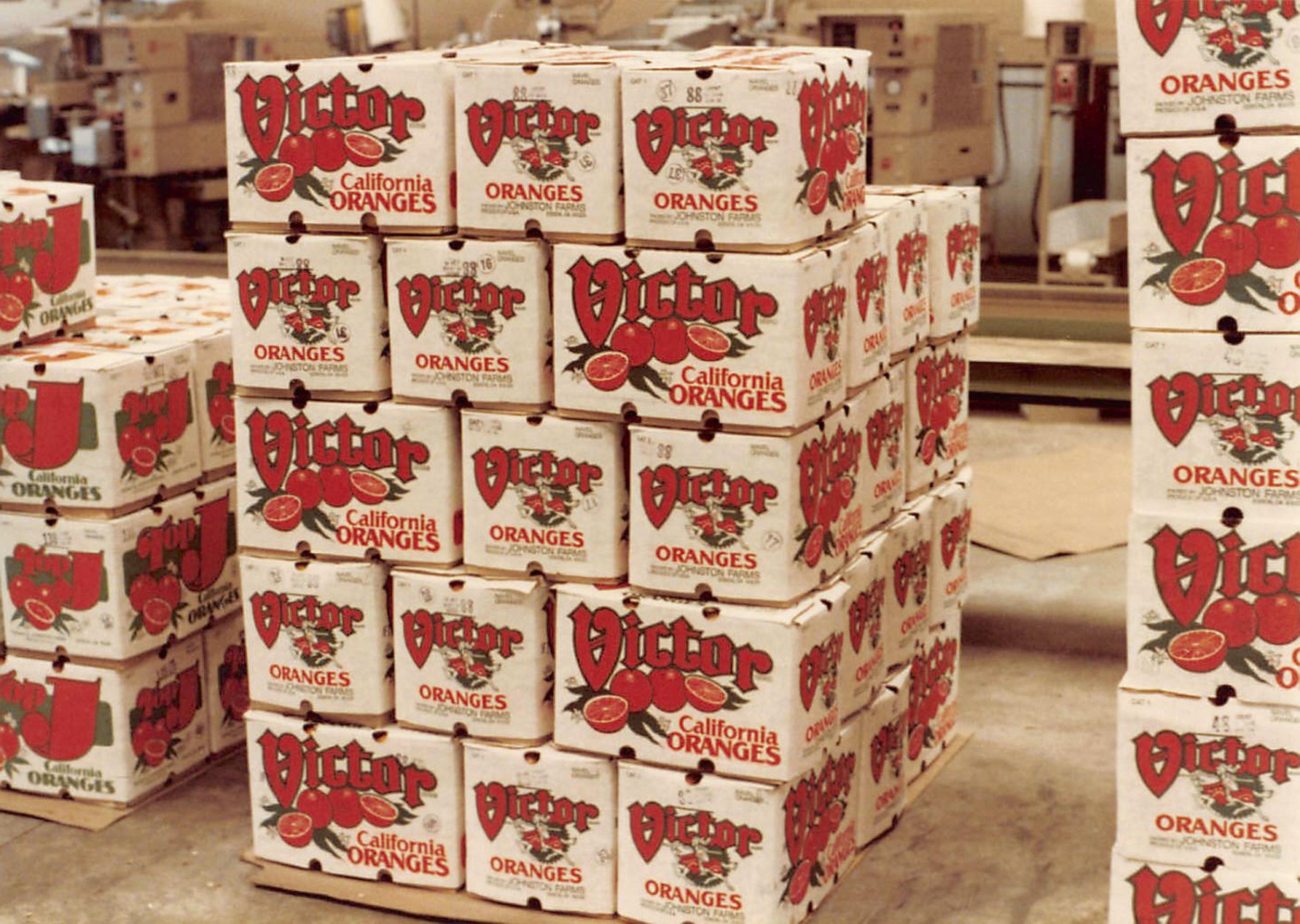 victor cartons 1982.jpg
