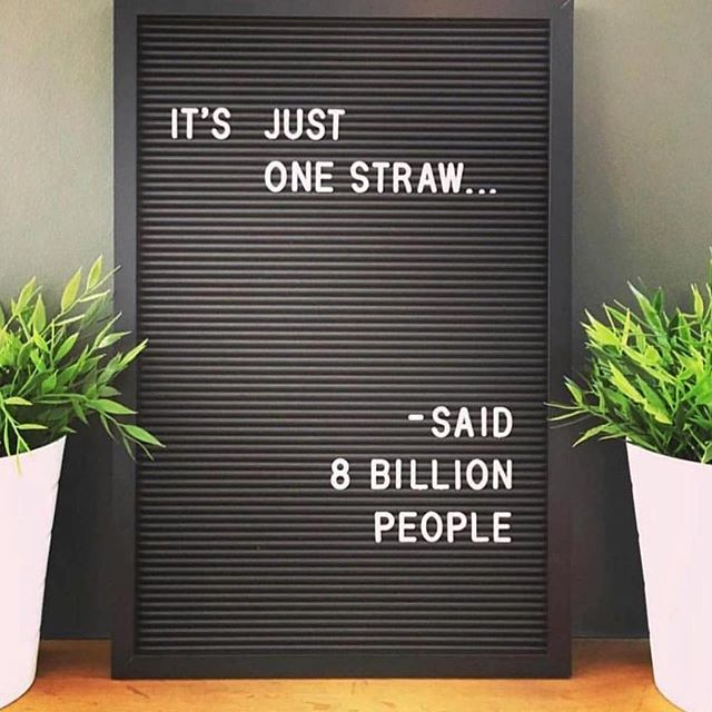 Important reminder that YOU, yes you, can make a difference. 😊 . #pastastraws #pastastraw #useyournoodle #plasticsucks #stopsucking #malibu #sangria #travelcocktails #zerowaste #sustainability #trashless #nowaste #refusethestraw #plasticfree #pastastraw #cocktails #marinelife #ocean #banthebag #plasticfree #seashepherd #naturephotography #environment #conservation #saveourseas #photooftheday #sea #wildlife