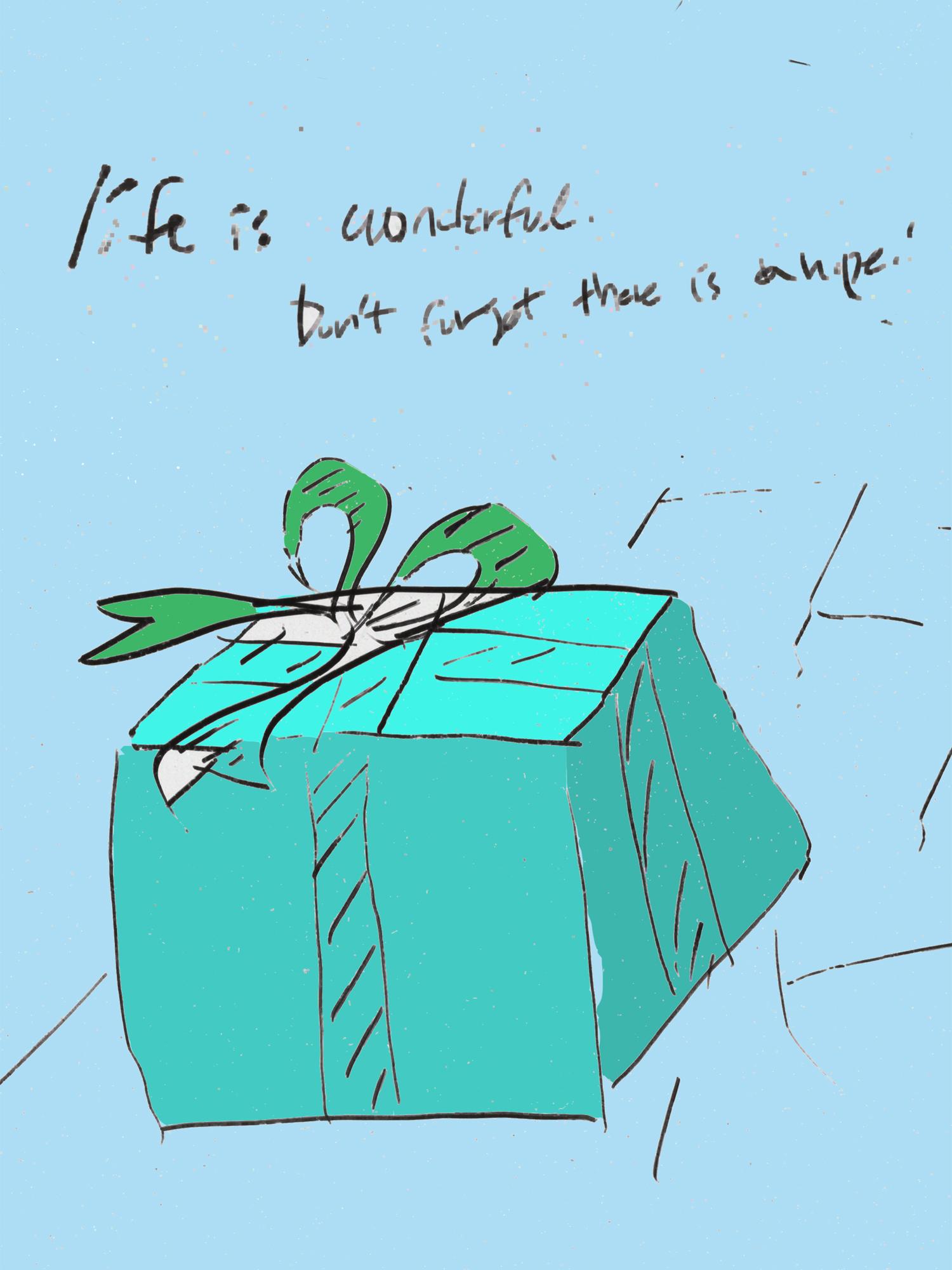 life is wonderful_unopened package.jpg