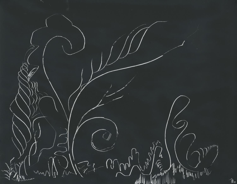 plants underwater.jpg