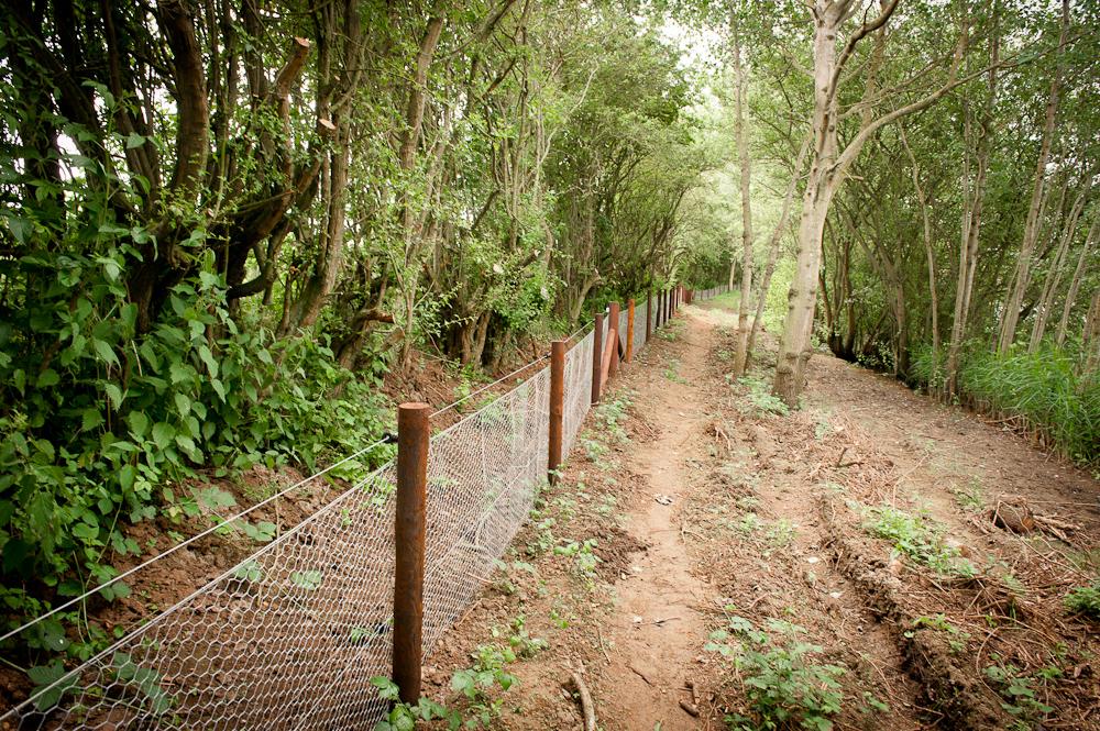 SF Fencing -004.jpg