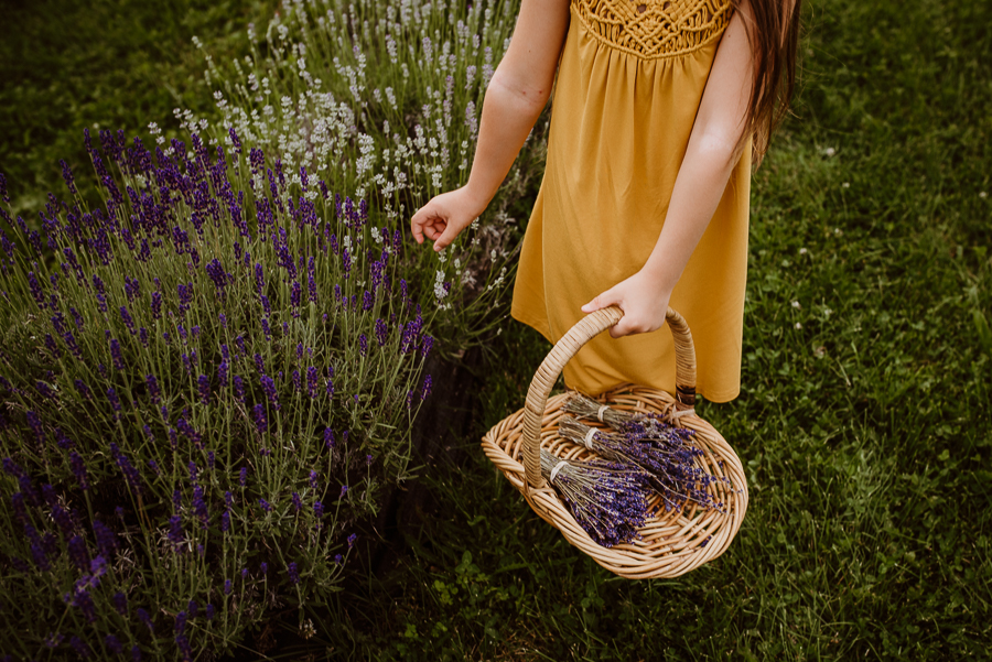 Moore Manor Lavender Newport Maine Photography Mommy And Me-5.jpg