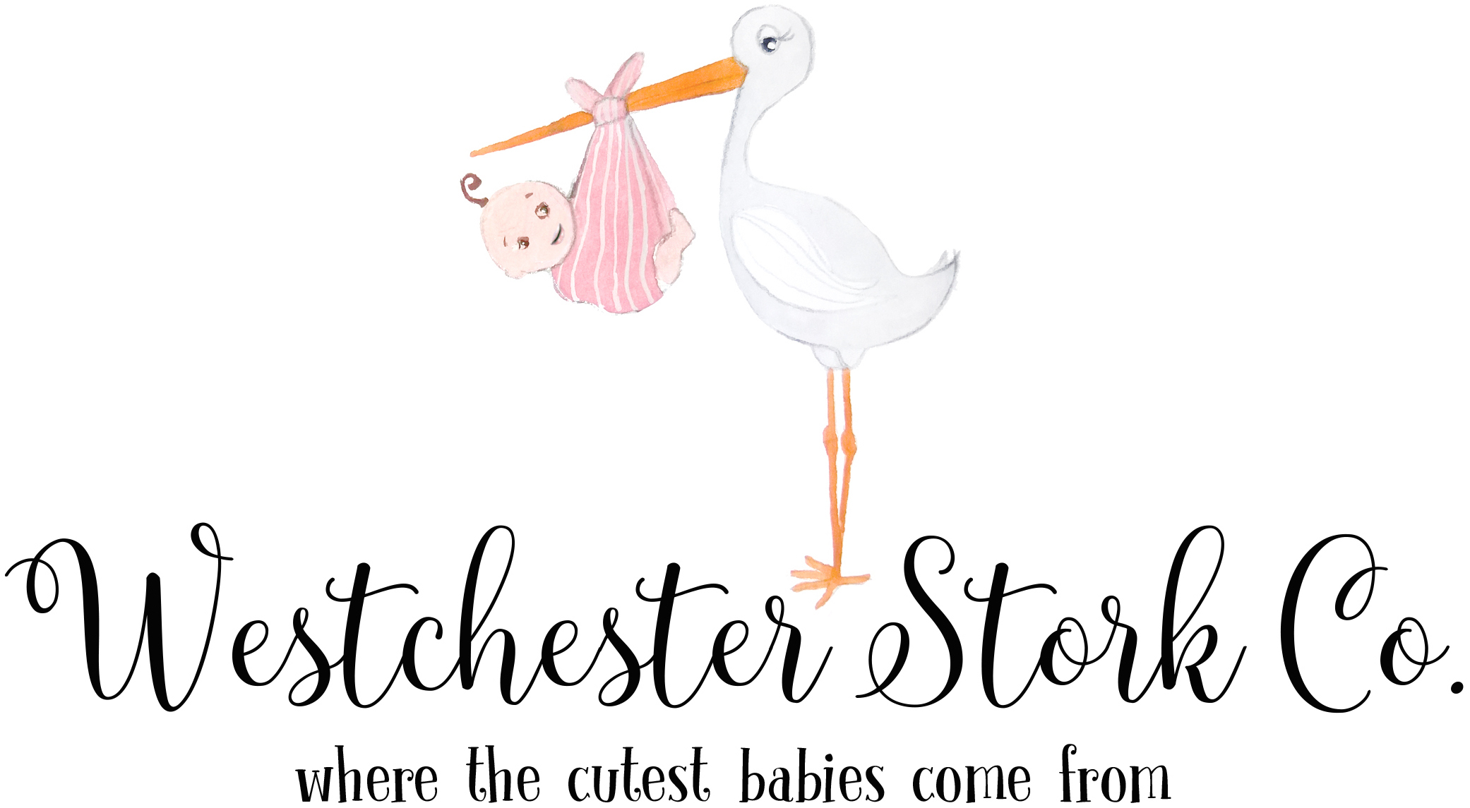 Stork co Logo copy.jpeg