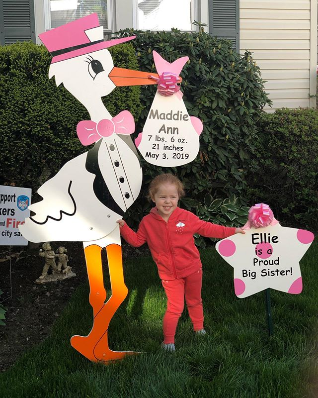 the best big sister Ellie ! 🎀💕🥰 #newbaby#bigsister#storkrentals#westchesterstork#westchestermoms#birthannouncements#babyshower#welcomebaby