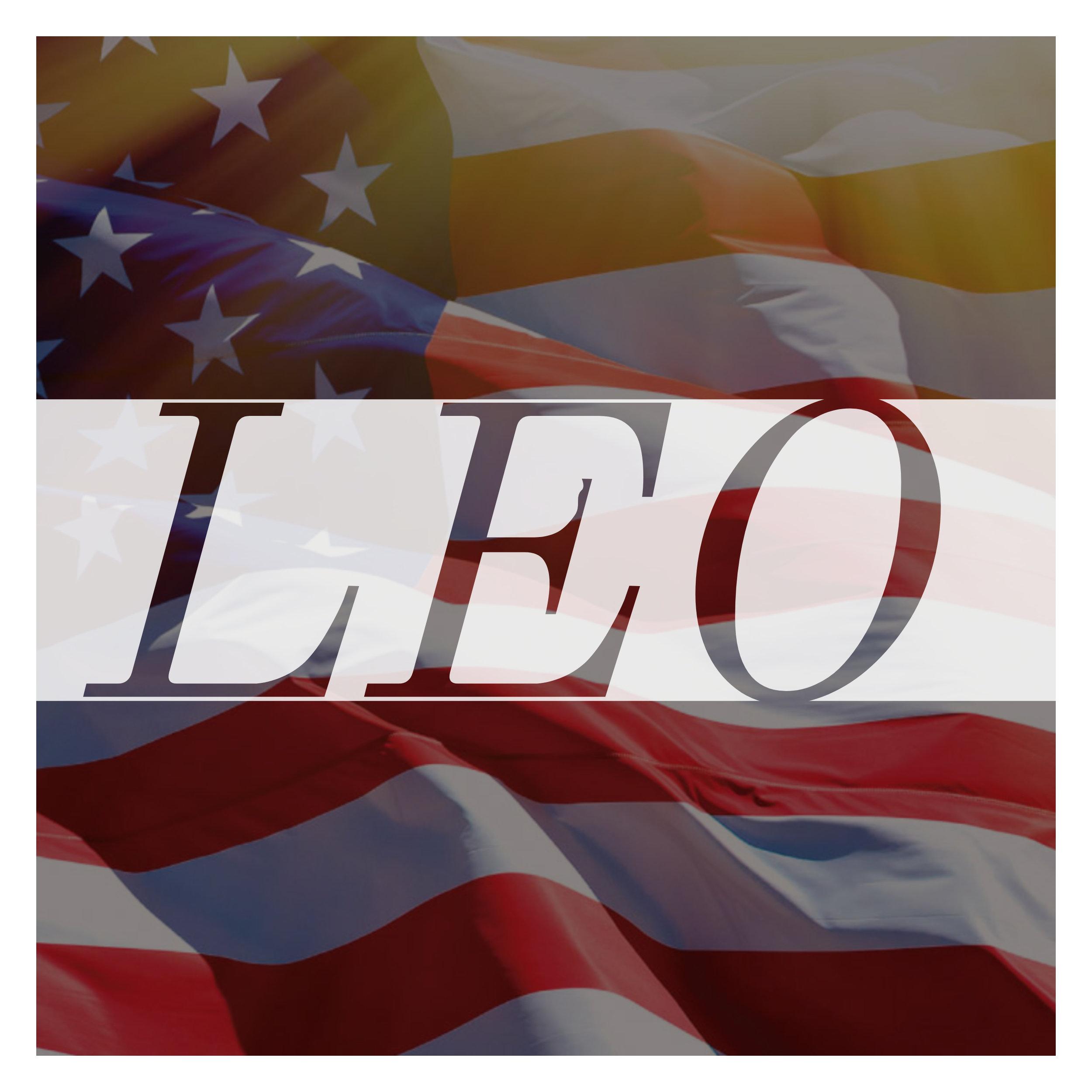 LEO Flag LEO only.jpg