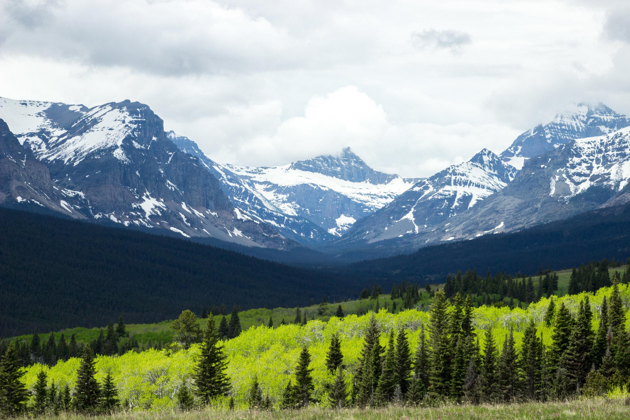 Glacier Range