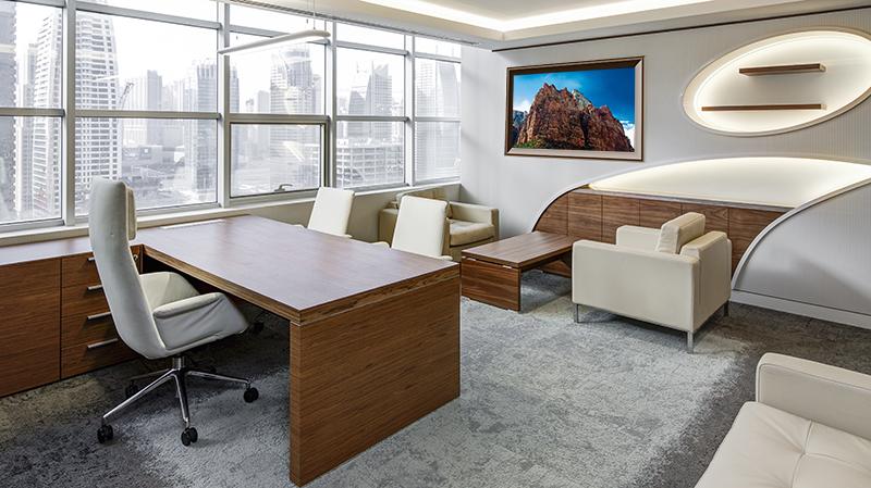 Office Zion in Blue 800.jpg