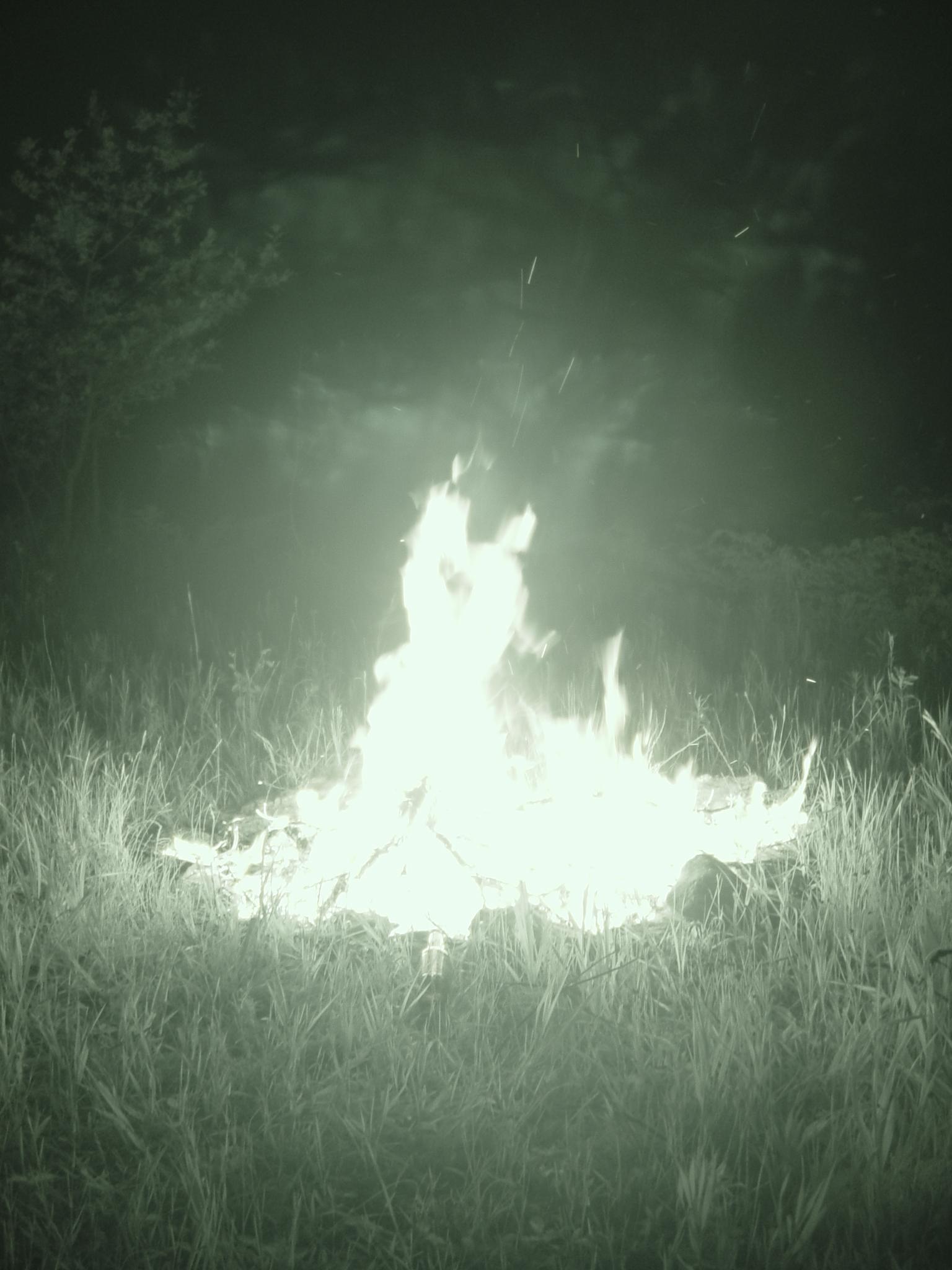 FireGown.JPG