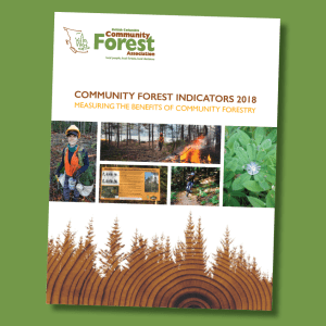 BC Community Forest Association releases 2018 Indicators Report