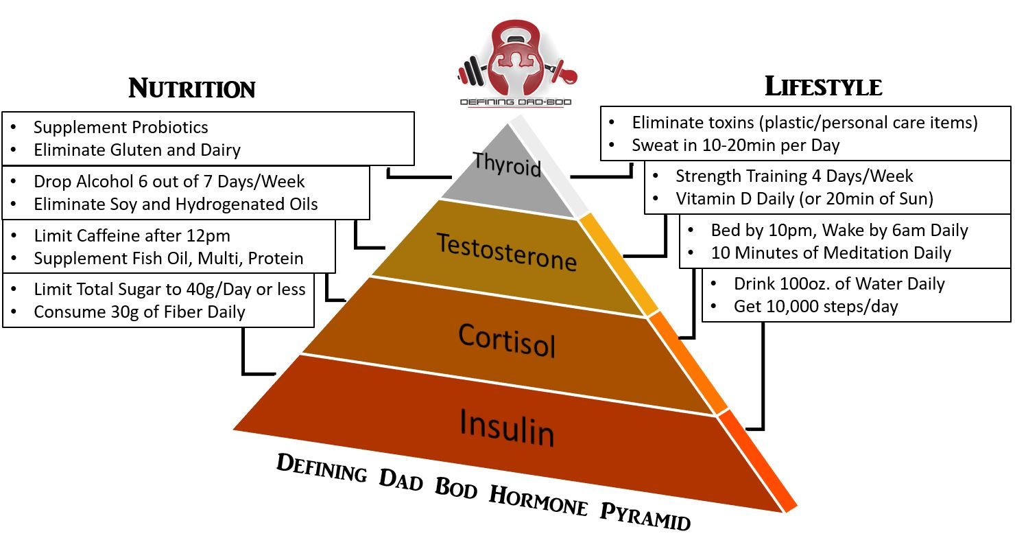 Hormone Pyramid 2.JPG