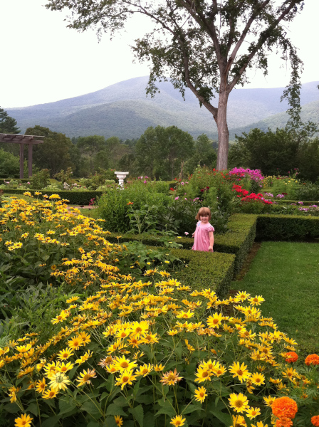 Beatrix in the Hildene Gardens. Jonesing to pick the flowers.