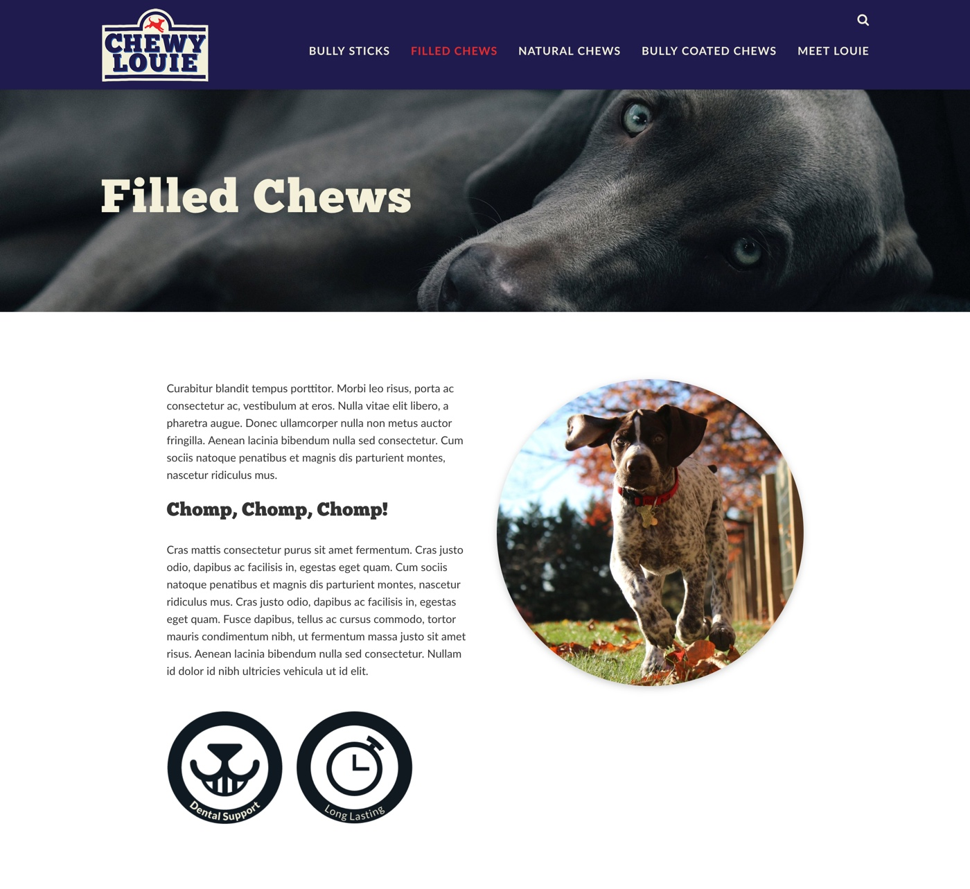 chewy-category-top.jpg