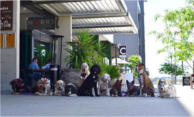 Image of the Foreshore Good Boys Gang from  @morksrestaurant   on Instagram
