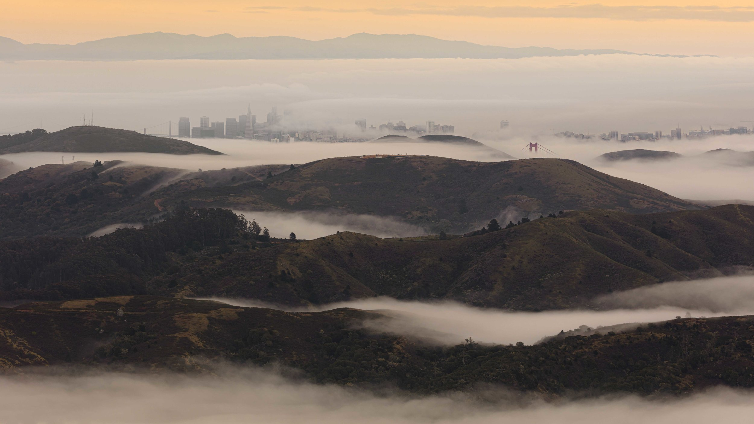 The City, view from Mt. Tamalpais