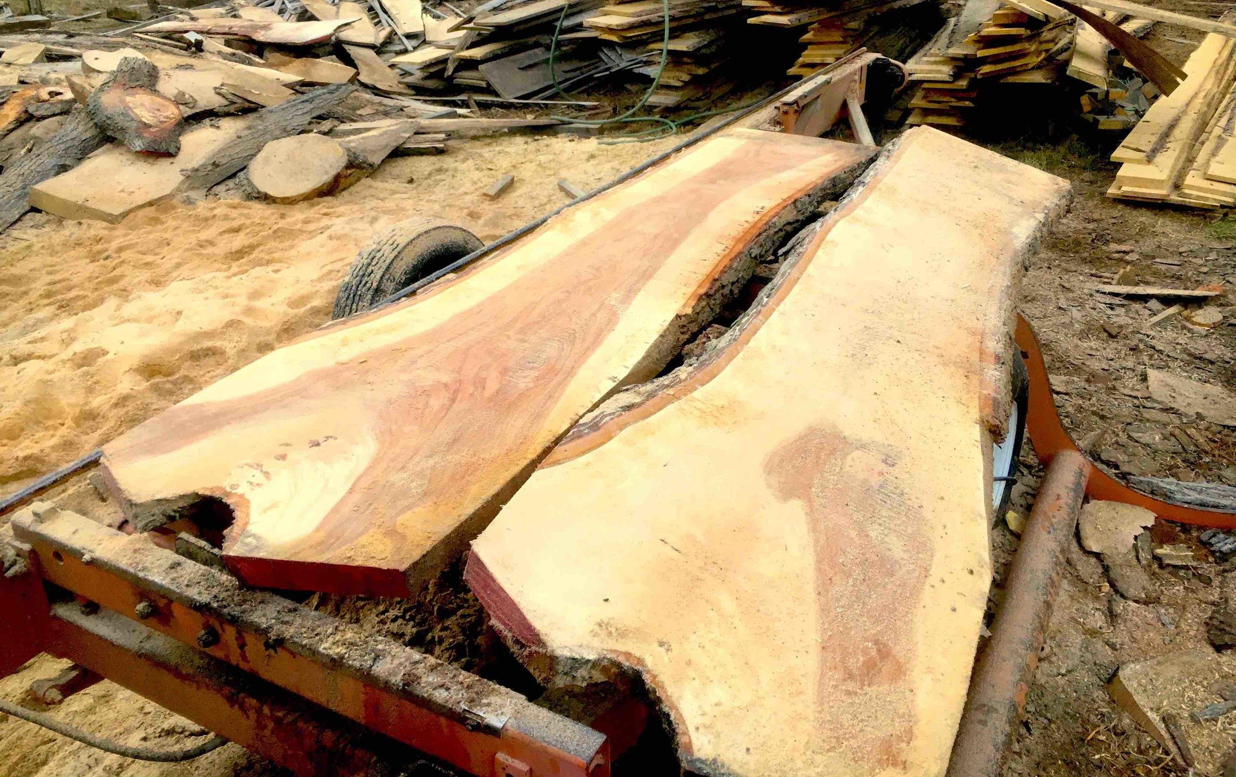 fireside farm slab crotch pecan.jpg