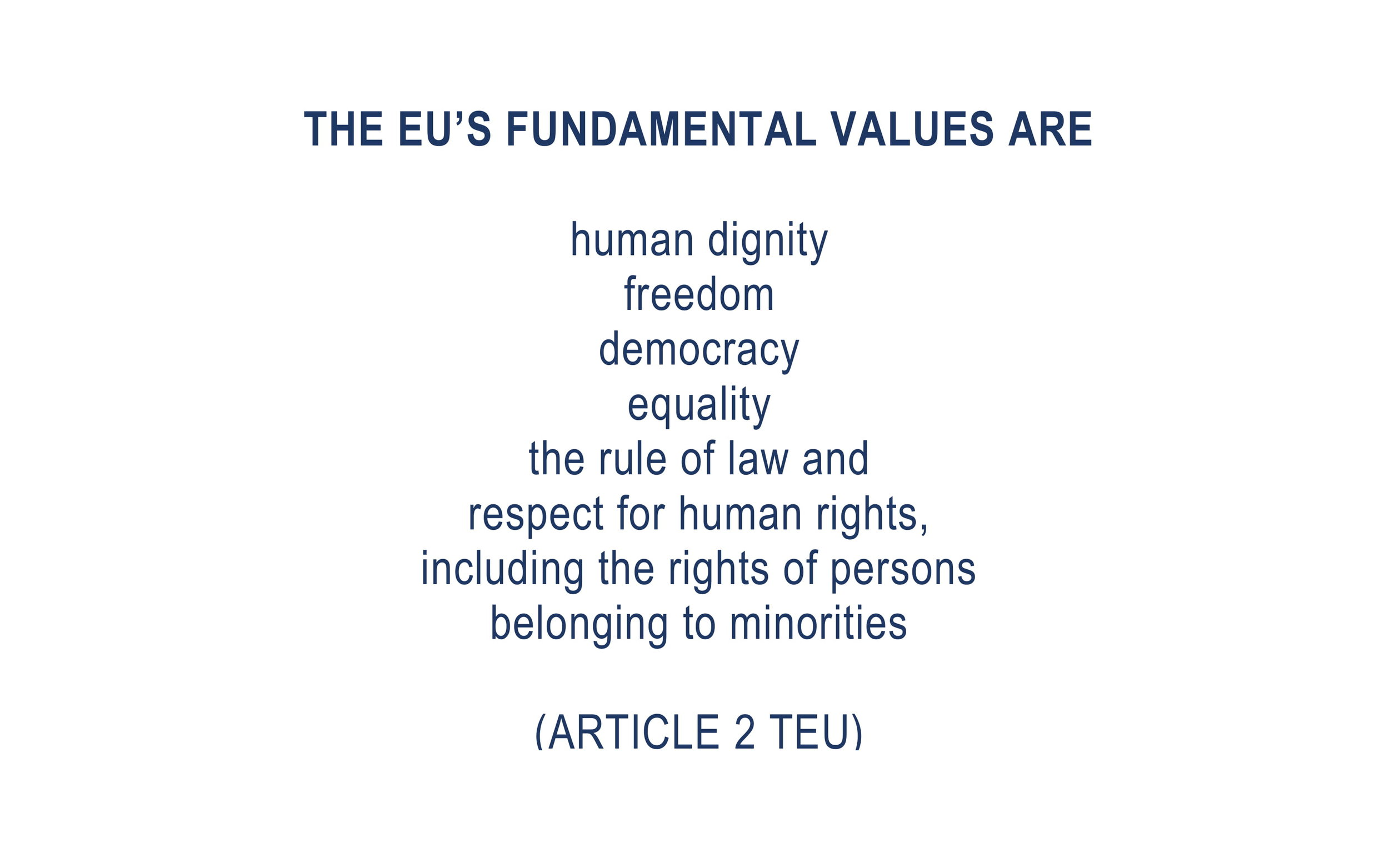 Appeal to MEPs_10 PM Orban Quotes_Article7Vote-04.jpg