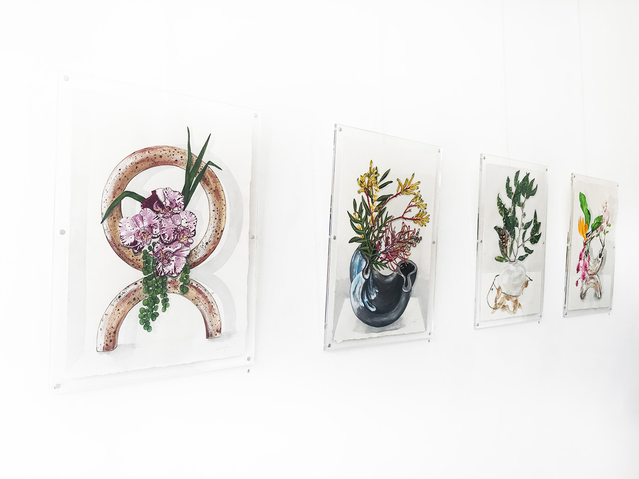 Sarah Jane Lightfoot - (left to right)  Orchid Orbit, Grevillea Curl, Eucalypt us Swell, Tropical Helix  - Watercolour and Gouache on Arches 300 gsm 100% Cotton Paper