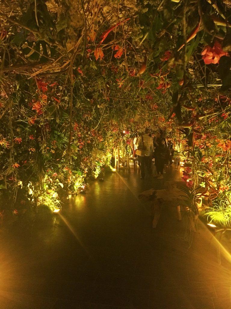 Tropical flowers forming a wonderful walkway. Artist: Unknown