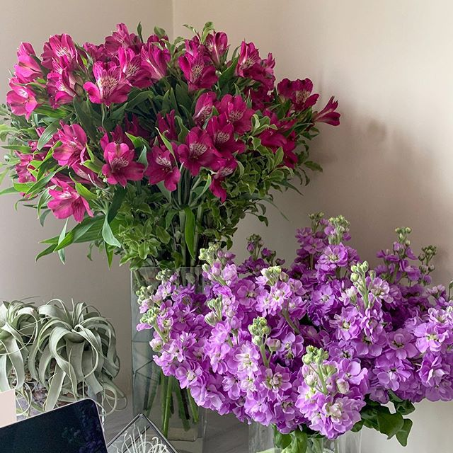 #britishflowersweek and I just thought I'd take my own advice and get some for myself. My desk never looked prettier! #treatyourself #pink #purple #flowersintheoffice #wellbeing